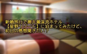 新婚旅行で奥入瀬渓流ホテル【星野リゾート】に泊まってみたけど、初日の感想聞きたい?
