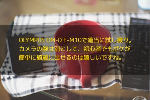 OLYMPUS OM-D E-M10で適当に試し撮り。カメラの腕は別として、初心者でもボケが簡単に綺麗に出せるのは嬉しいですね。