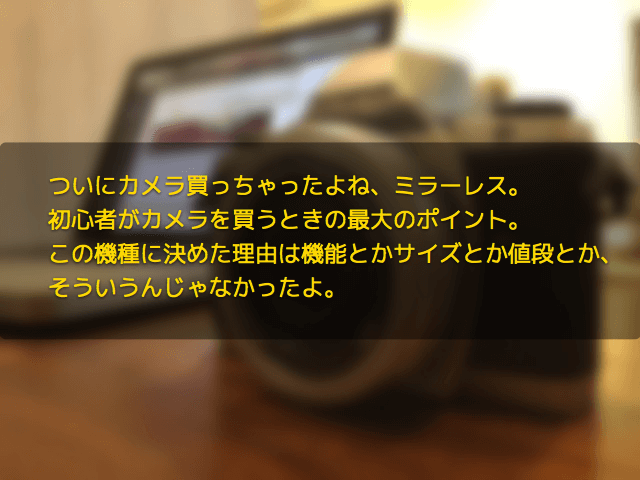 ついにカメラ買っちゃったよね、ミラーレス。初心者がカメラを買うときの最大のポイント。この機種に決めた理由は機能とかサイズとか値段とか、そういうんじゃなかったよ。