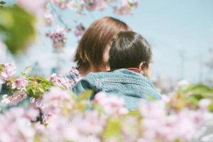 そろそろ桜も終わりなので2017年の桜を写真で振り返ってみる