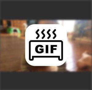 アプリ「GIFトースター」を使ってiPhoneでGIF動画をサクッと作ろう